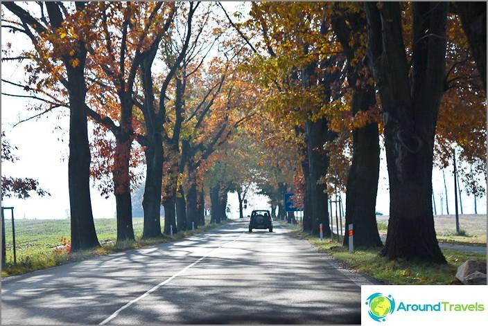 Alley Road on yleinen ilmiö Euroopassa.