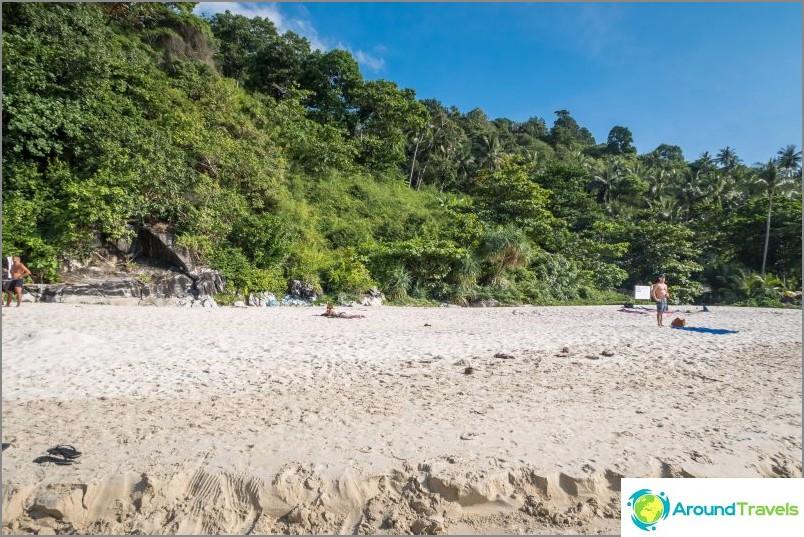 Зад плажа е солидна стена в джунглата.