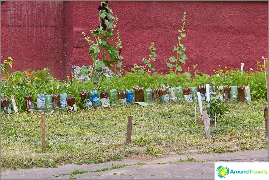 Kukkapenkki muovipullojen aidalla