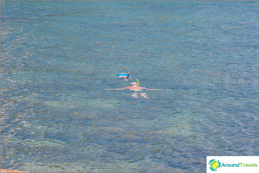 ranta-koralli-lahti-koralli-lahti-koralli-lahti-koh-Samui-15