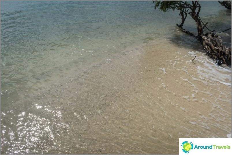 Jos katsot suoraan, niin veden alla näet suuria korallinpalasia.