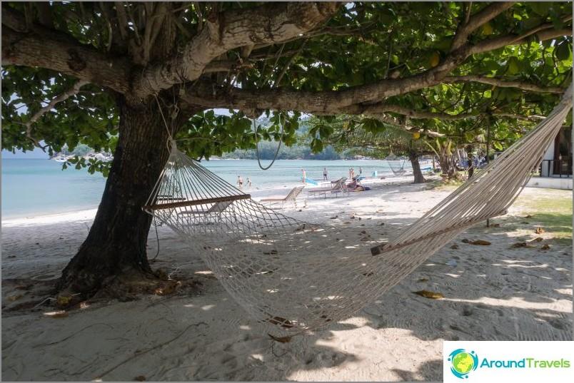 Дървета в левия край на плажа. Обърнете внимание на пясъка - той беше пениран с гребло.