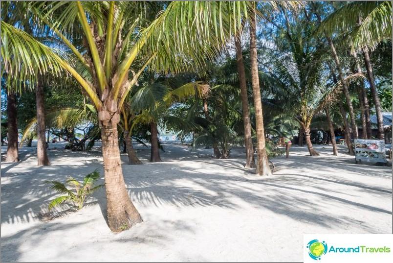 Malibun ranta Phanganilla on palmulehto, jossa on valkoista hiekkaa