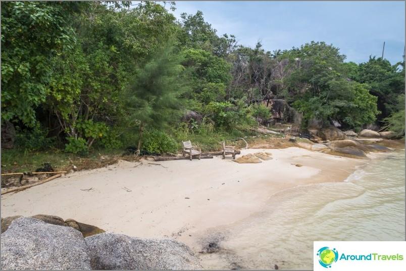Брегът зад плажа е покрит със зеленина от различни калибри.