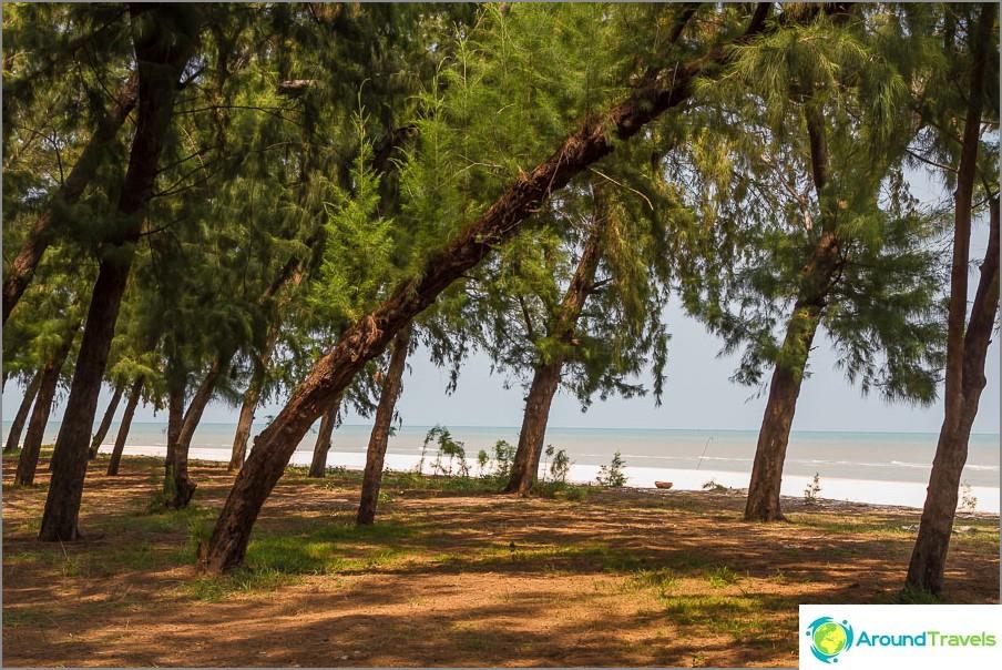the-Laem-sala-beach-Laem-sala-beach-13