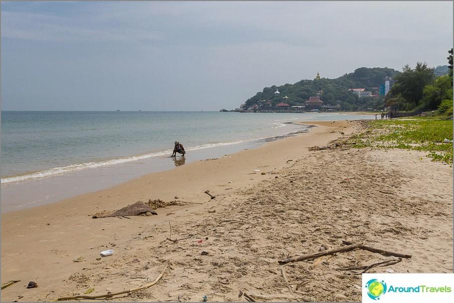 beach-tao-o-turtle-vicino-mountain-Khao-tao-02