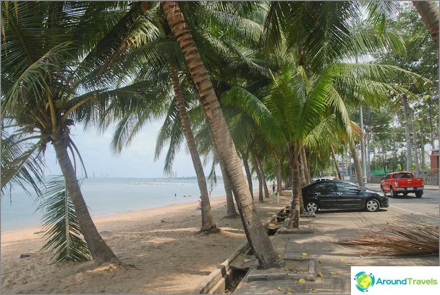 Palm Alley pitkin rantaa kävelykatua