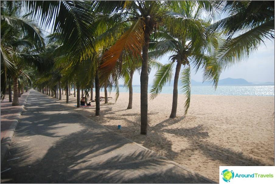 Palm Alley nella parte centrale della spiaggia