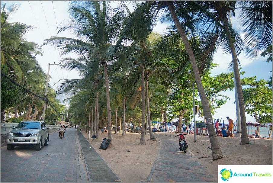 Palm vicolo lungo la spiaggia