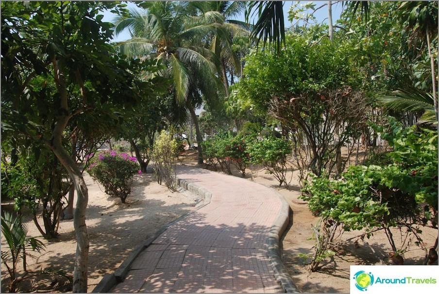 Polku pitkin rantaa kohti Dongtania