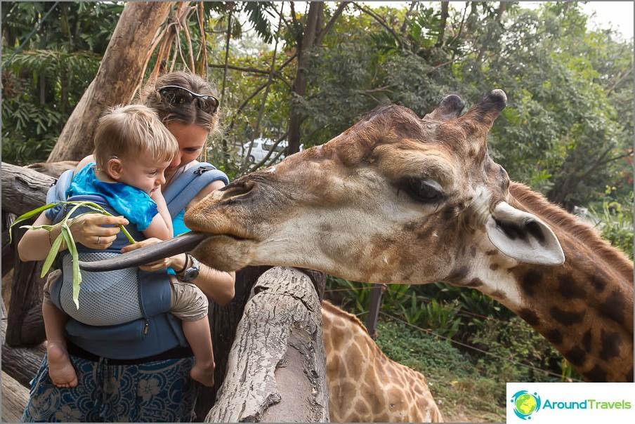 Зоопарк в Банкок