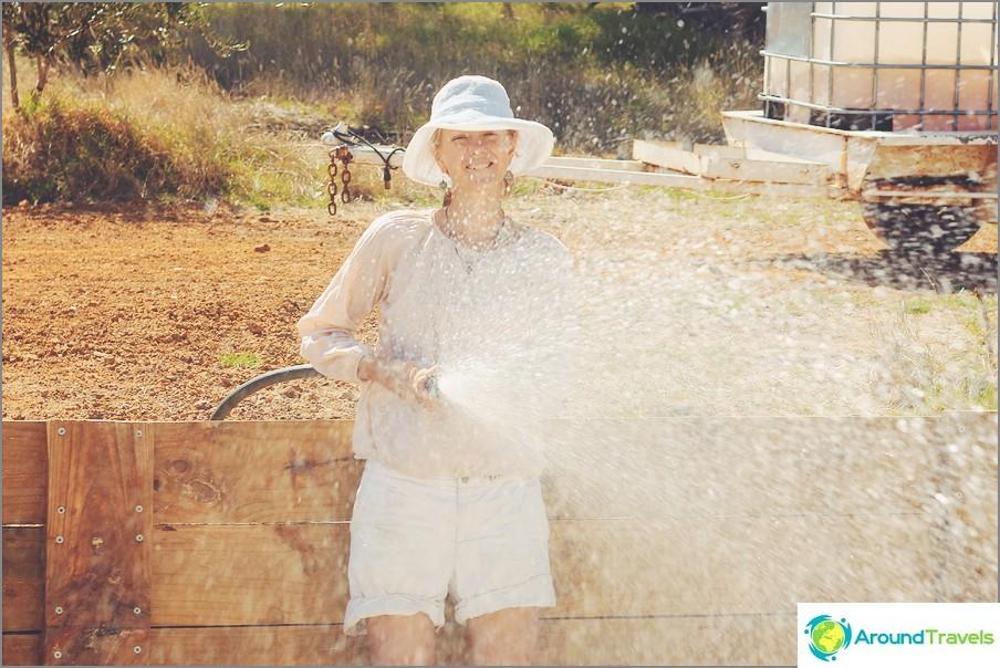 Maatilojen vapaaehtoistyö Australiassa