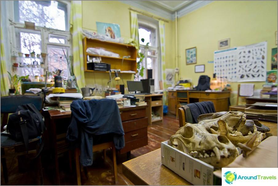 Tutkijoiden kabinetti