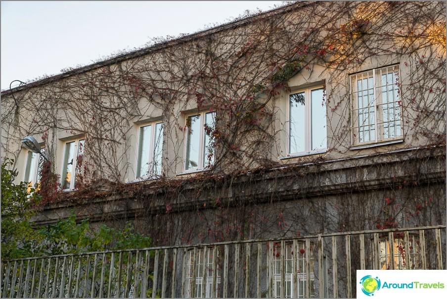 Къщата, сплетена с лох, изглежда много различно
