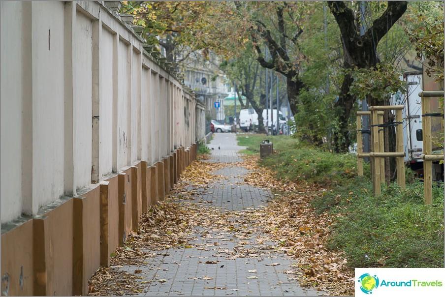 Обичам зеленина по улиците