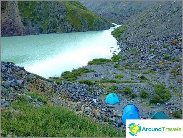 Altai-vuori. Korkeudessa 2500m.