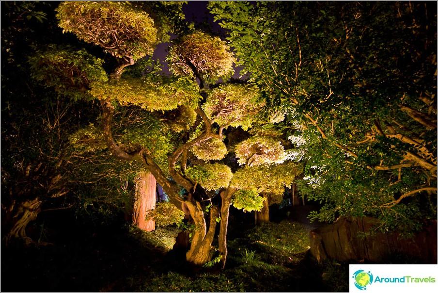 Nan Lianin puutarha