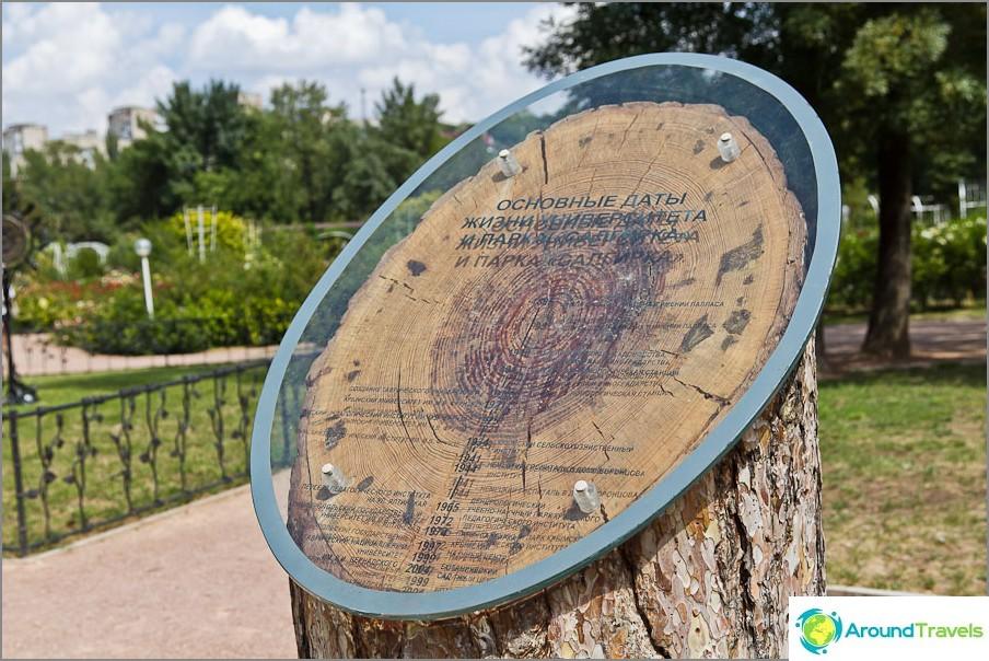 Puun ympyrät osoittavat Vorontsov-puiston tärkeimmät päivämäärät
