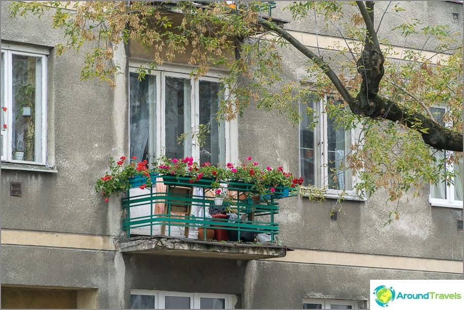 Mutta kaikkialla kukkia parvekkeilla ja ikkunalaudalla