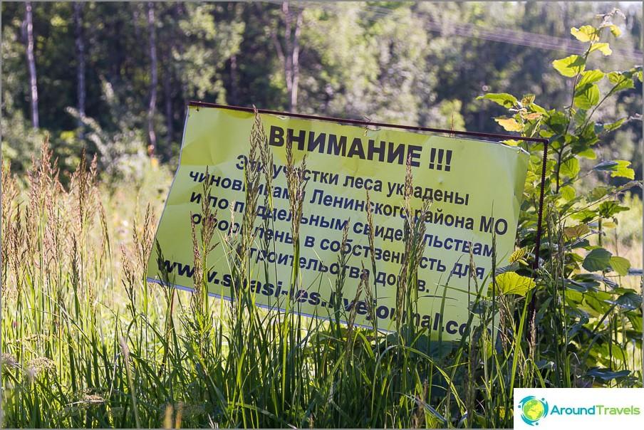 Ehkä Butovon metsä katoaa ajan myötä