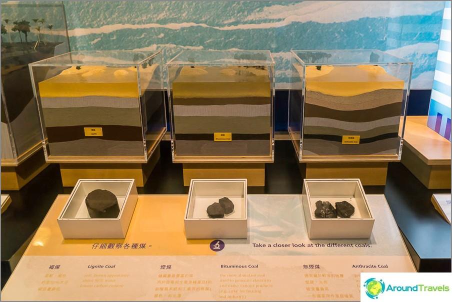 Разновидности на въглищата и почвената структура