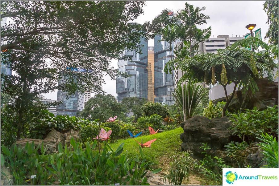 Park hong kong