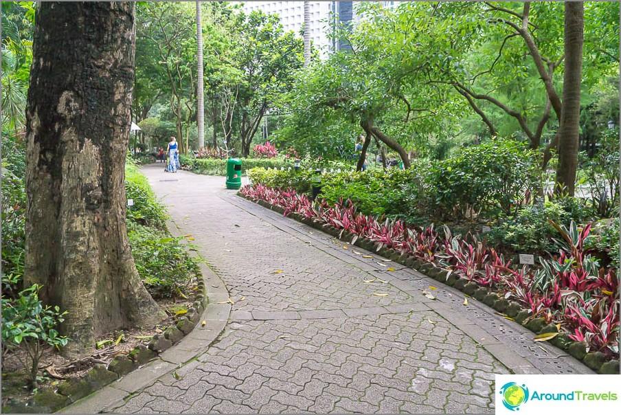 Kävelemme puistossa