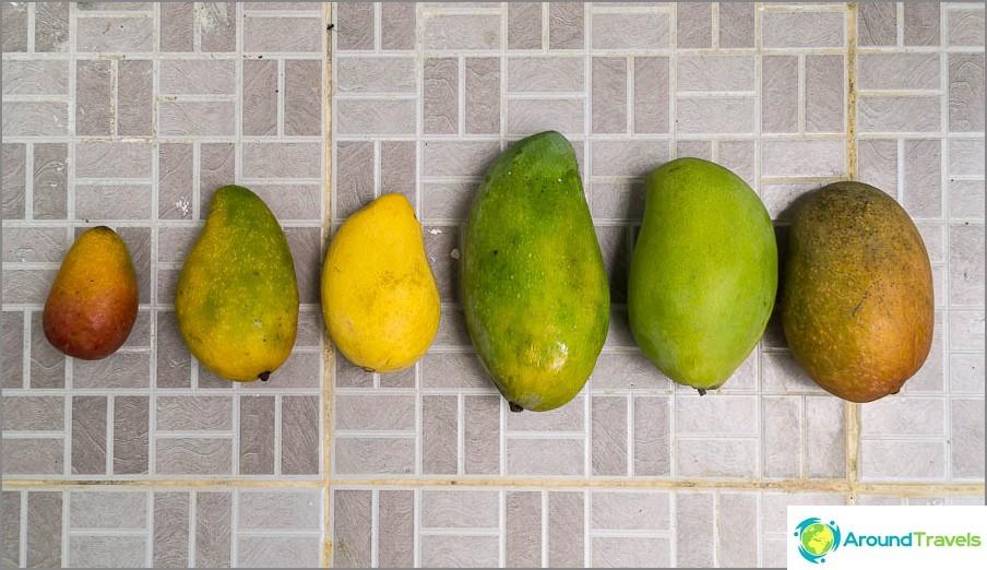 Mango-lajitelma