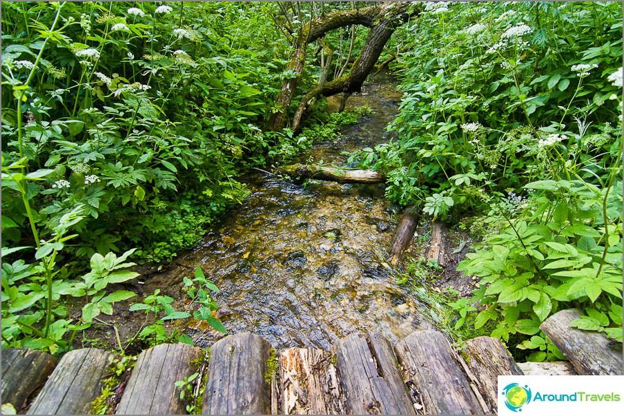 Usein purojen läpi on puusiltoja