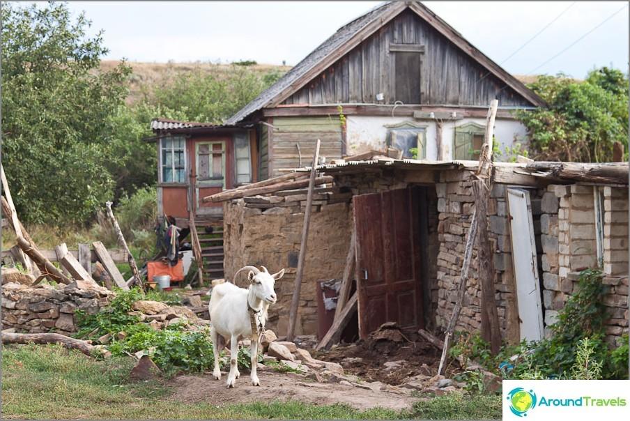Все още жилищна сграда във фермата Дядин