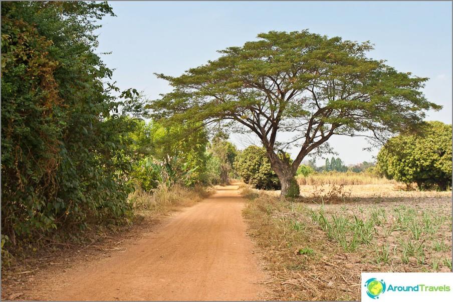 Sukhothain länsiosa