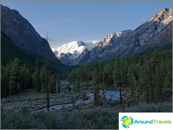 планини на Алтай. Дървета в мраз. снимка Борис Волчек.