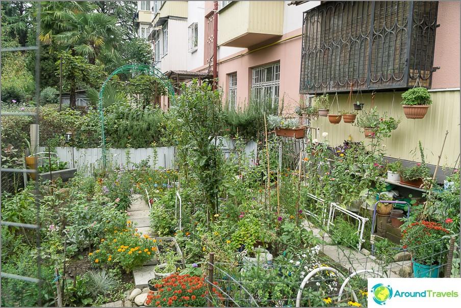 Частни градини - красиви, но самозаснемащи
