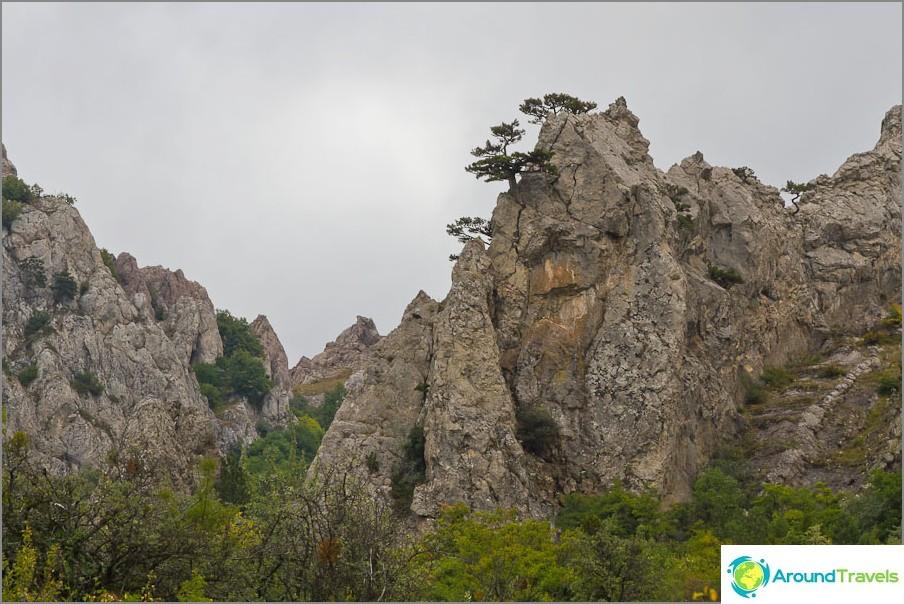 Miksi ei Avatarista tulevat kiinalaiset kivet?
