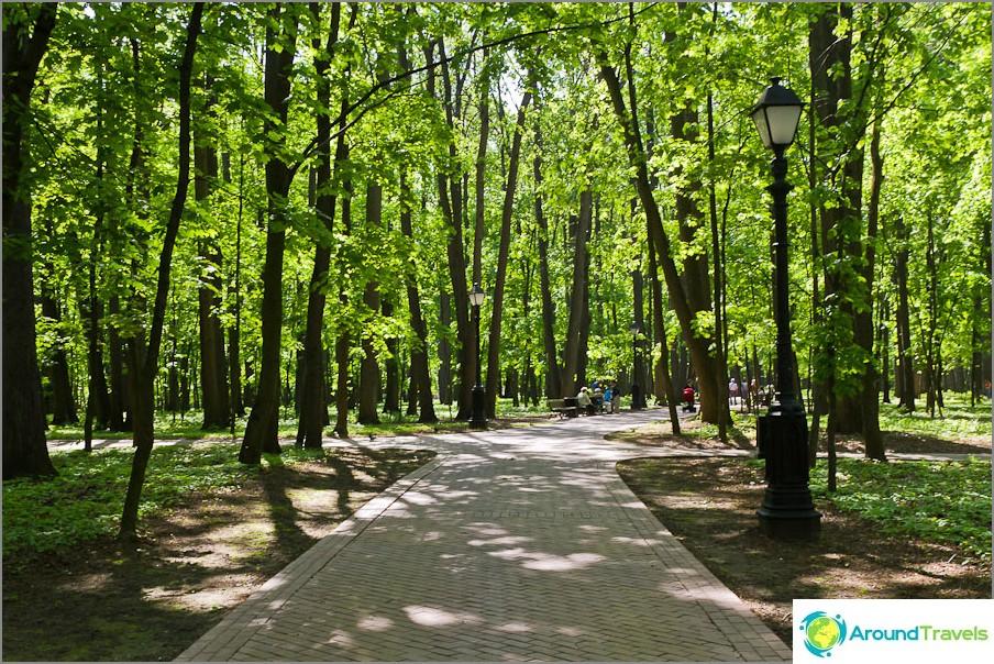 Tsaritsynon puisto
