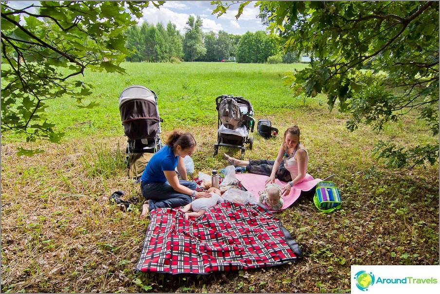 Pikku piknikemme