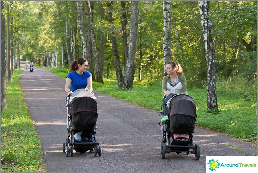 Kävelemme Gorki Leninskyn kartanon puiston läpi