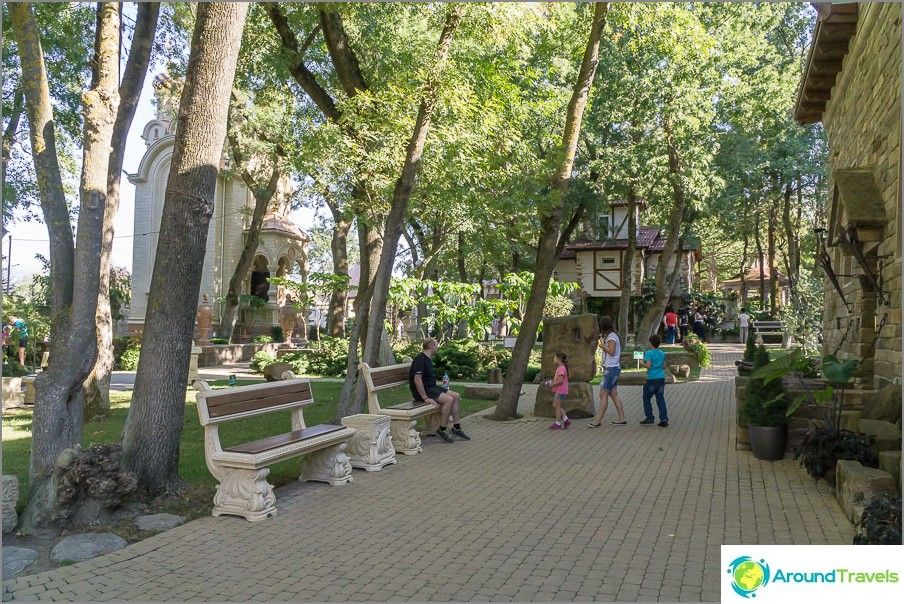 Staryj-puisto-17
