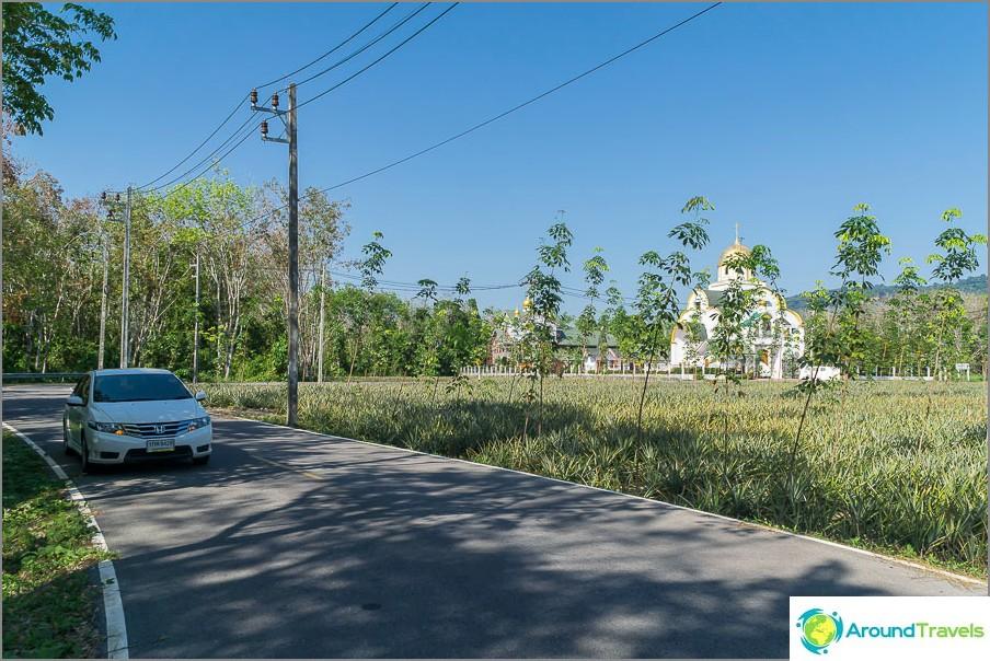 Honda City -autoni ja ortodoksinen kirkko palmujen taustalla