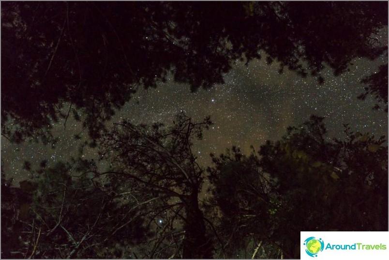No, myös yöllä, et näe tällaisia tähtiä kaupungissa