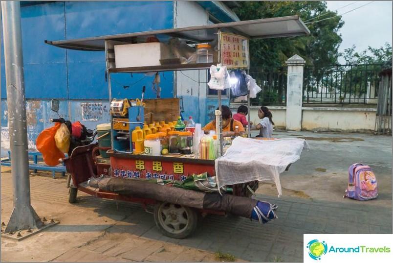 Mikä ei ole thaimaalainen makaki?