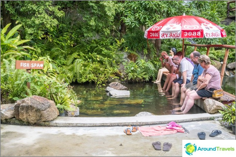 Цената за посещение на рибния спа е включена в цената на билета за вход - 50 бата