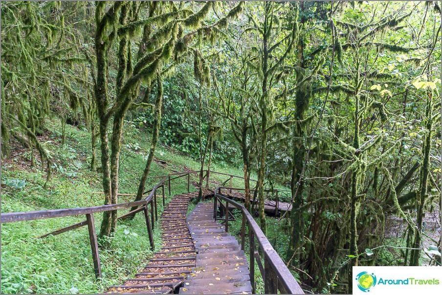 Приказна гора около 33 водопада