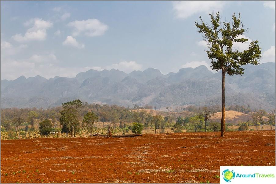 Punaiset kentät taustalla vuorten myanmar