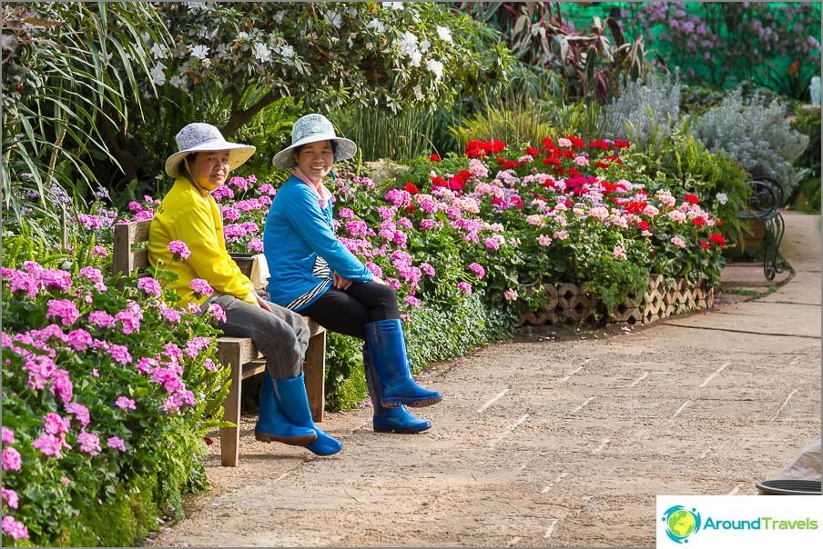 Puiston työntekijät kukkapaviljongissa