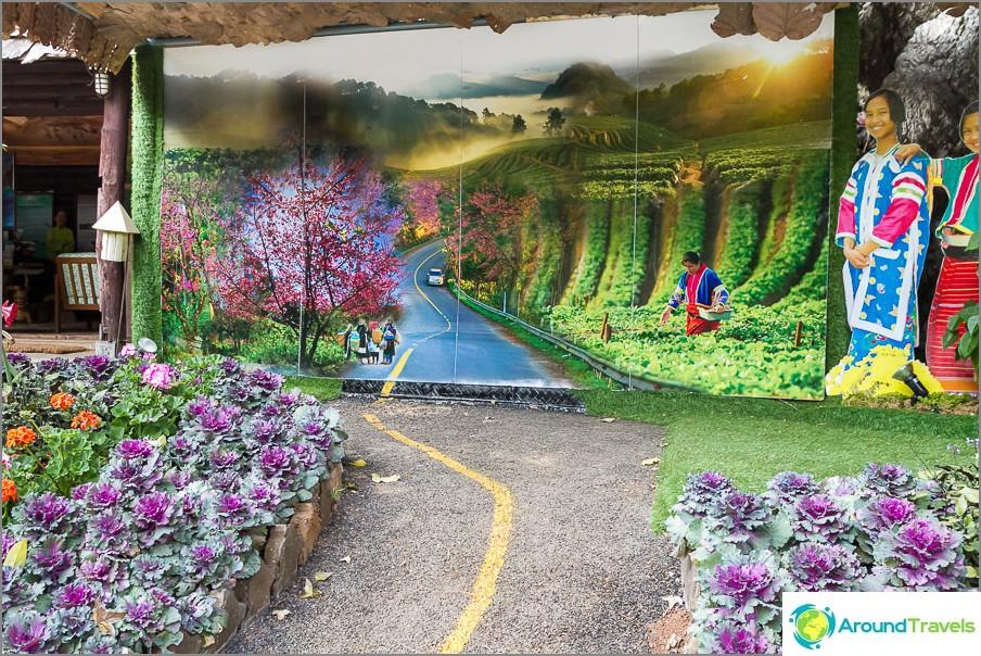 Näin paikalliset taiteilijat näkevät puiston
