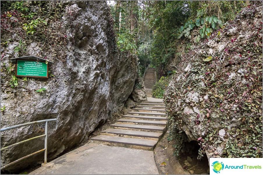 Tiellä kallioita ja viidakkoa