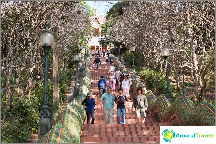 Стълбище към храма Wat Doi Suthep