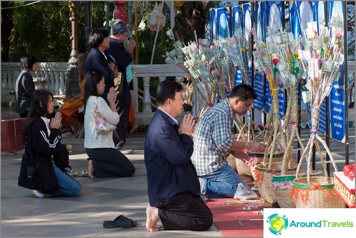 Молитви към пари дървета