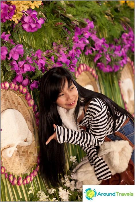 Thait rakastavat olla valokuvattuna niin paljon!